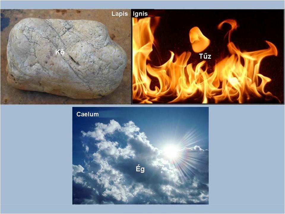 De fordítottam magyarról latinra is. Pipáról volt szó: - Kő tűz.