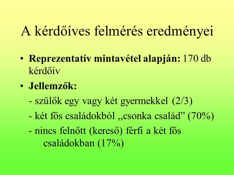 A kérdőíves felmérés eredményei •Reprezentatív mintavétel alapján: 170 db kérdőív •Jellemzők: - szülők egy vagy két gyermekkel (2/3) - két fős családo