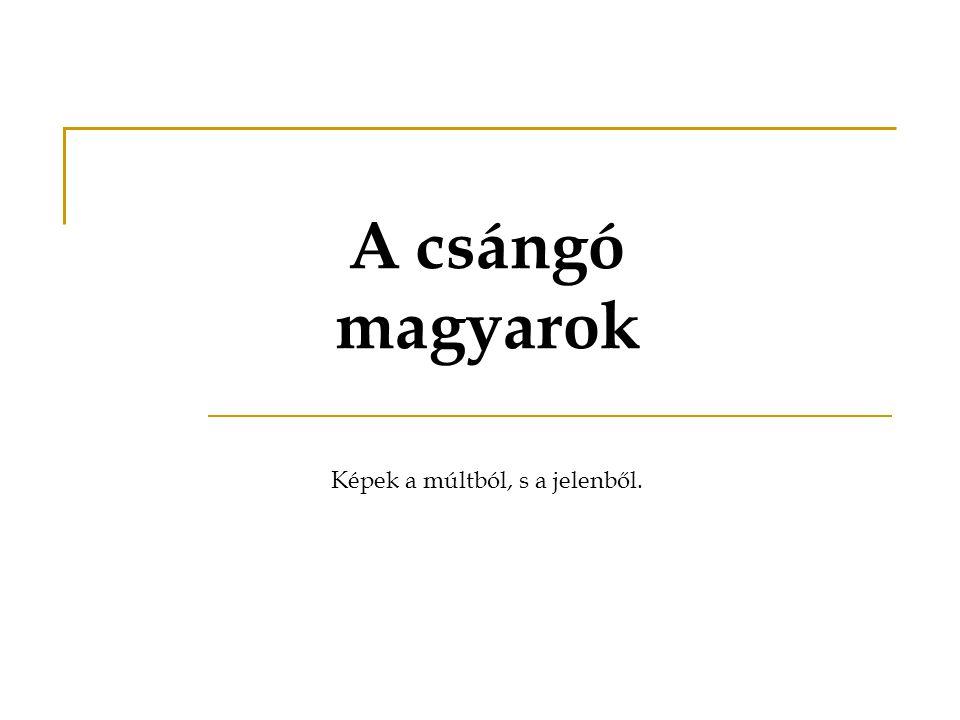 A csángó magyarok Képek a múltból, s a jelenből.