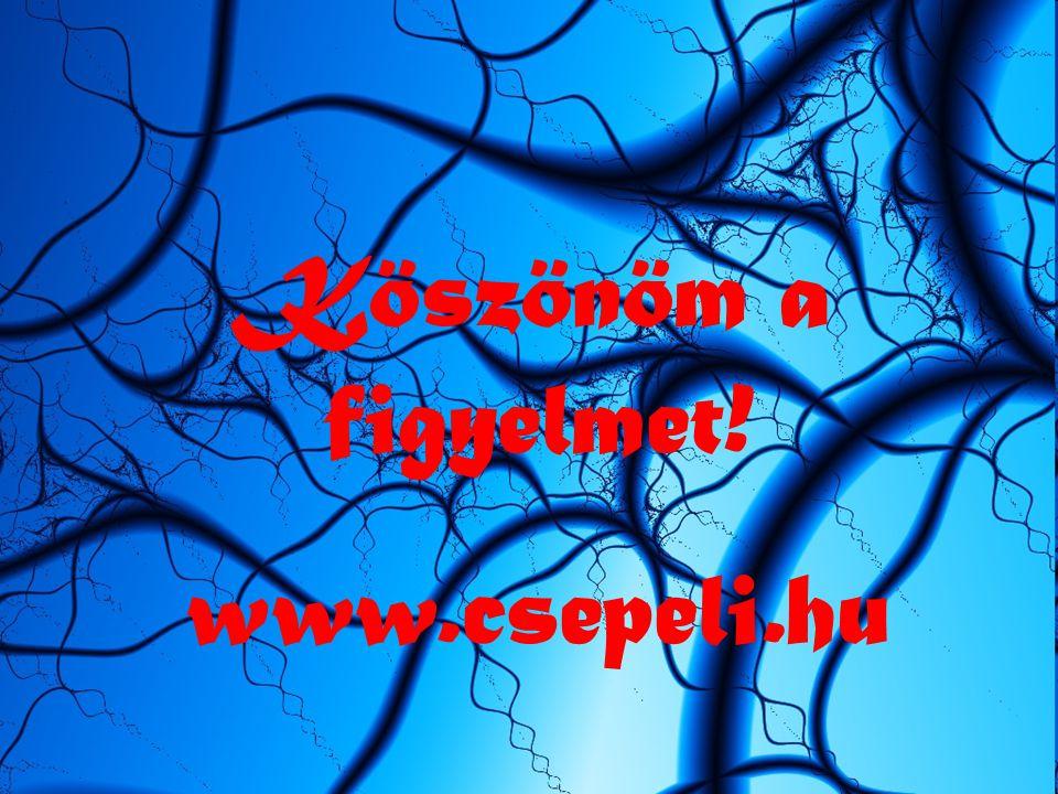 Köszönöm a figyelmet! www.csepeli.hu