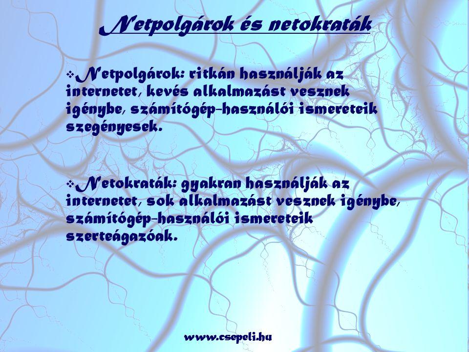 Netpolgárok és netokraták  Netpolgárok: ritkán használják az internetet, kevés alkalmazást vesznek igénybe, számítógép-használói ismereteik szegényesek.