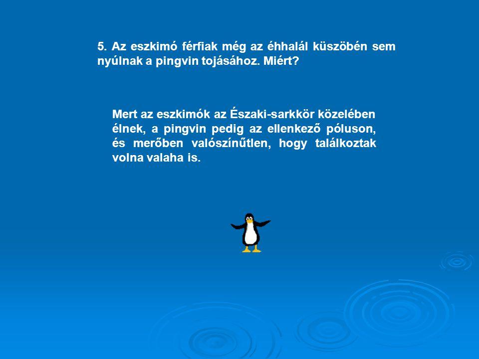 5. Az eszkimó férfiak még az éhhalál küszöbén sem nyúlnak a pingvin tojásához. Miért? Mert az eszkimók az Északi-sarkkör közelében élnek, a pingvin pe
