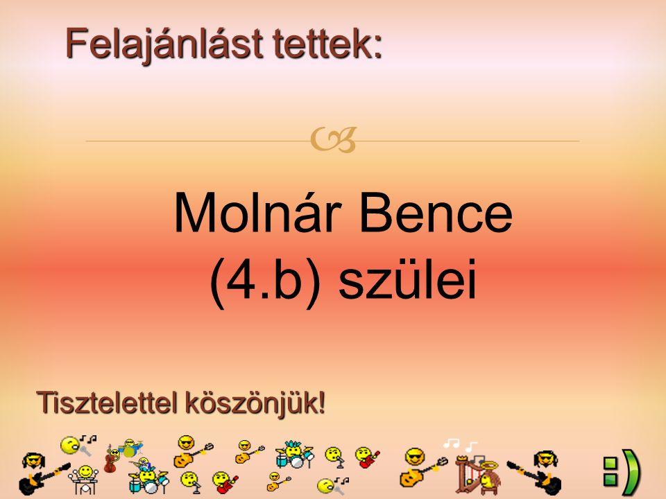 Felajánlást tettek: Tisztelettel köszönjük!  Molnár Bence (4.b) szülei