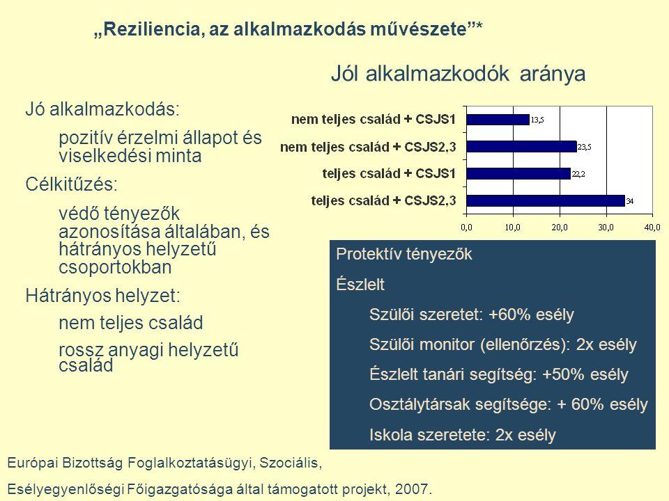 """""""Reziliencia, az alkalmazkodás művészete * Európai Bizottság Foglalkoztatásügyi, Szociális, Esélyegyenlőségi Főigazgatósága által támogatott projekt, 2007."""