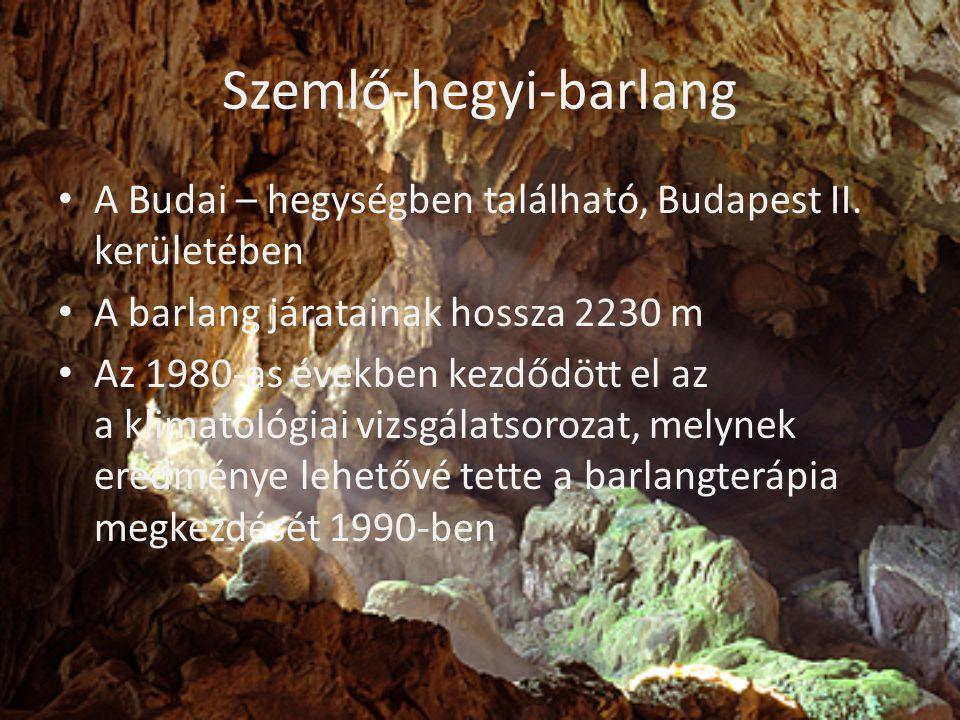Szemlő-hegyi-barlang • A Budai – hegységben található, Budapest II. kerületében • A barlang járatainak hossza 2230 m • Az 1980-as években kezdődött el