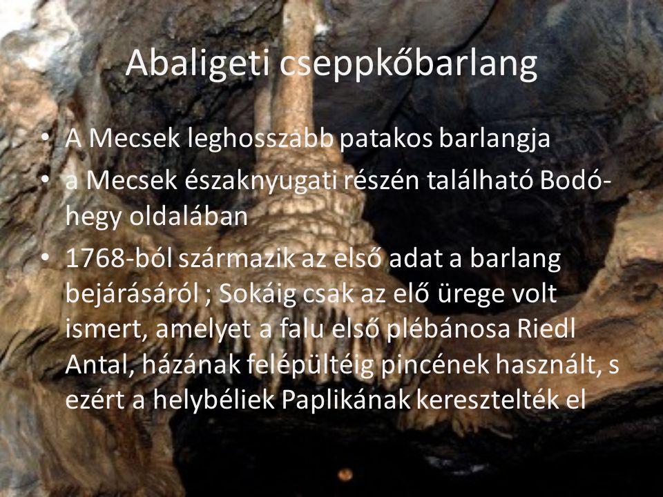 Abaligeti cseppkőbarlang • A Mecsek leghosszabb patakos barlangja • a Mecsek északnyugati részén található Bodó- hegy oldalában • 1768-ból származik a