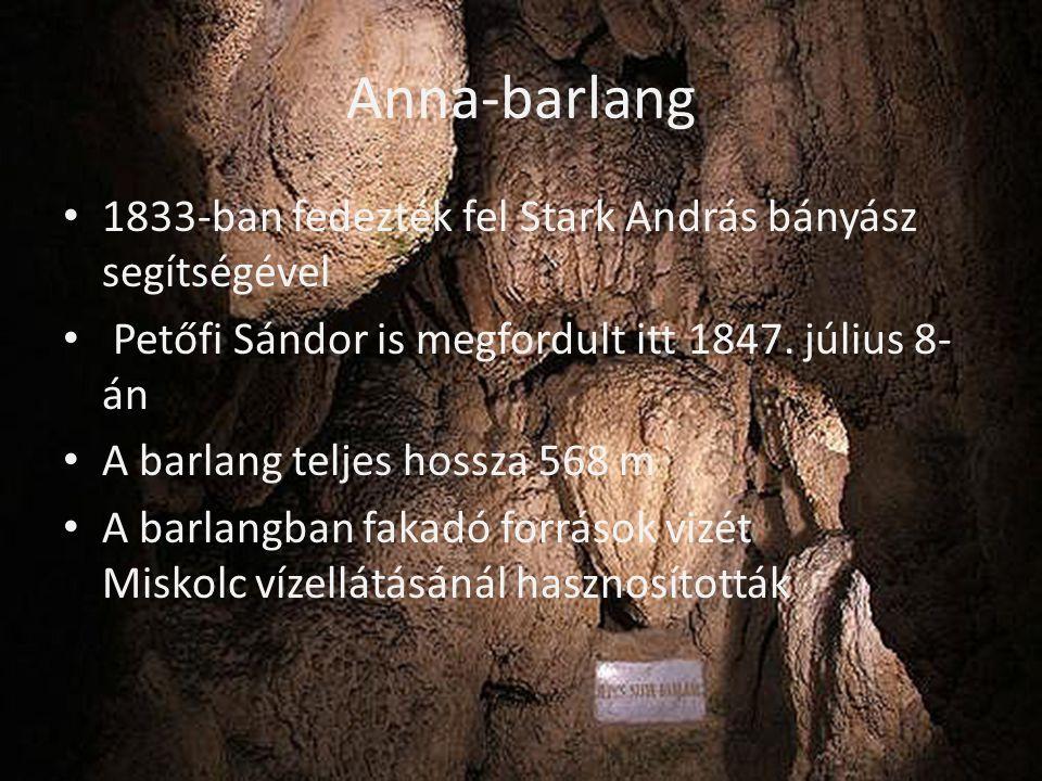 Anna-barlang • 1833-ban fedezték fel Stark András bányász segítségével • Petőfi Sándor is megfordult itt 1847. július 8- án • A barlang teljes hossza