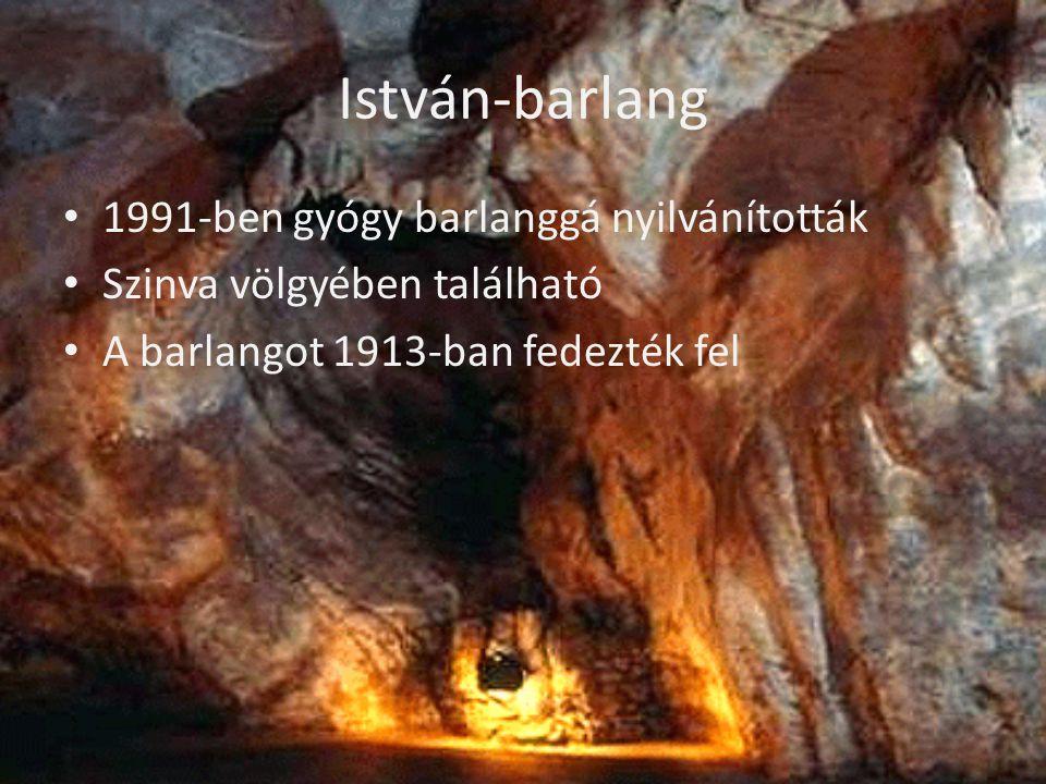 István-barlang • 1991-ben gyógy barlanggá nyilvánították • Szinva völgyében található • A barlangot 1913-ban fedezték fel