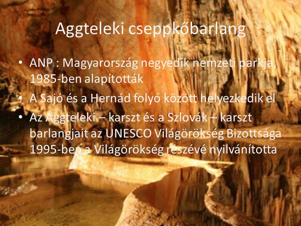 Aggteleki cseppkőbarlang • ANP : Magyarország negyedik nemzeti parkja, 1985-ben alapították • A Sajó és a Hernád folyó között helyezkedik el • Az Aggt