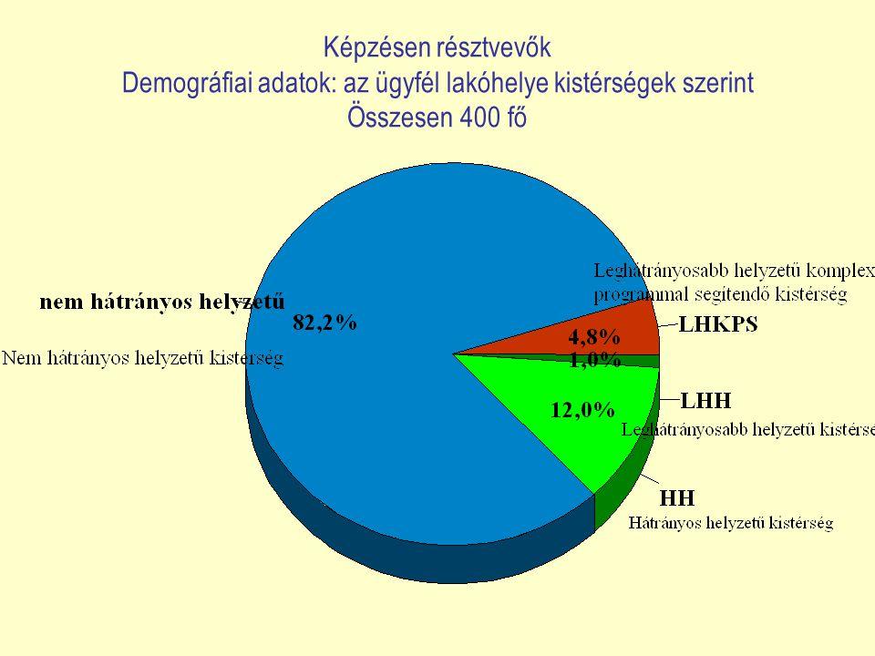 Képzésen résztvevők Demográfiai adatok: az ügyfél lakóhelye kistérségek szerint Összesen 400 fő