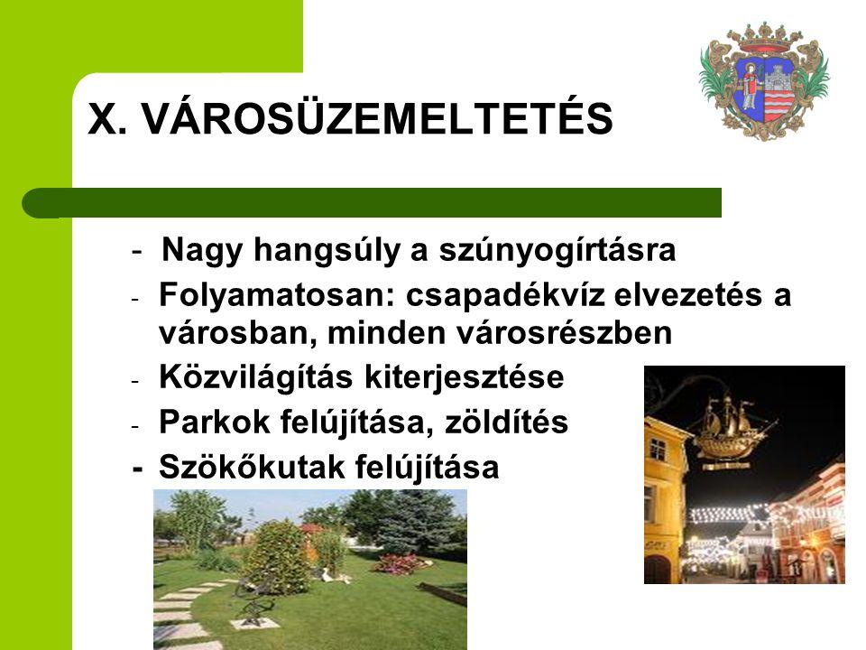 - Nagy hangsúly a szúnyogírtásra - Folyamatosan: csapadékvíz elvezetés a városban, minden városrészben - Közvilágítás kiterjesztése - Parkok felújítás