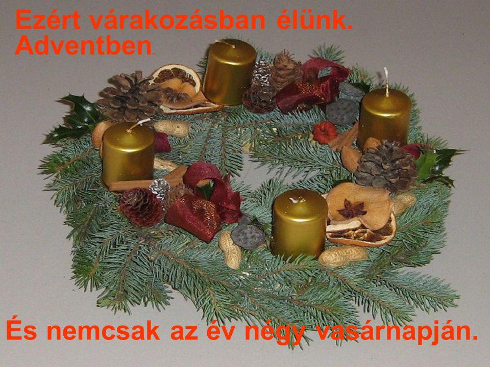 Ezért várakozásban élünk. És nemcsak az év négy vasárnapján. Adventben.