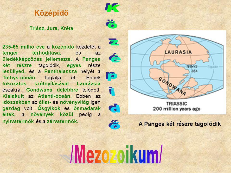 Középidő Triász, Jura, Kréta 235-65 millió éve a középidő kezdetét a tenger térhódítása, és az üledékképződés jellemezte. A Pangea két részre tagolódi