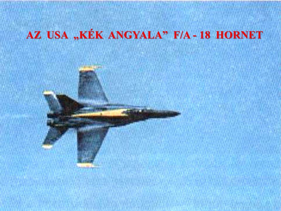 """AZ USA """"KÉK ANGYALA F/A - 18 HORNET"""
