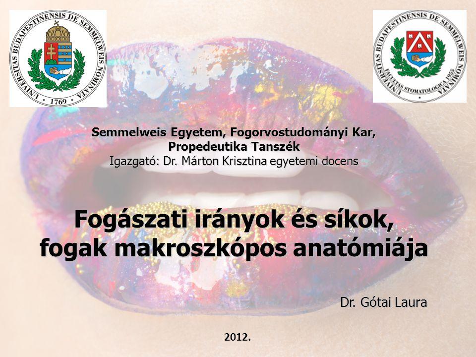 Semmelweis Egyetem, Fogorvostudományi Kar, Propedeutika Tanszék Igazgató: Dr. Márton Krisztina egyetemi docens Fogászati irányok és síkok, fogak makro