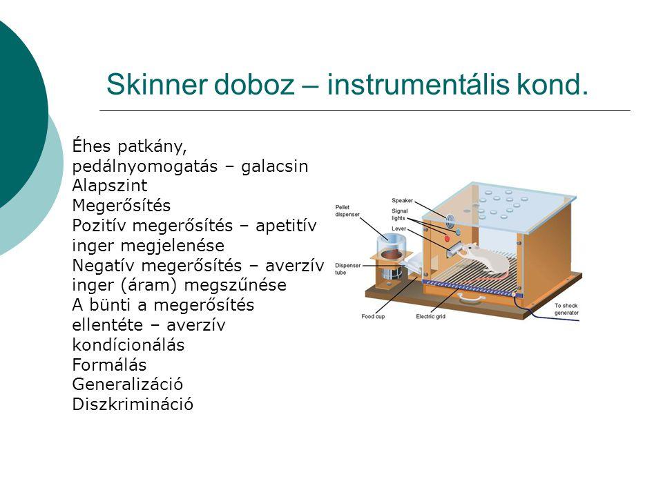 Skinner doboz – instrumentális kond. Éhes patkány, pedálnyomogatás – galacsin Alapszint Megerősítés Pozitív megerősítés – apetitív inger megjelenése N