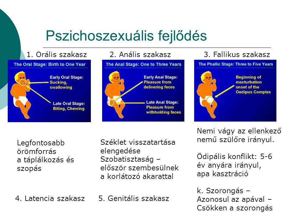 Pszichoszexuális fejlődés Legfontosabb örömforrás a táplálkozás és szopás Széklet visszatartása elengedése Szobatisztaság – először szembesülnek a kor