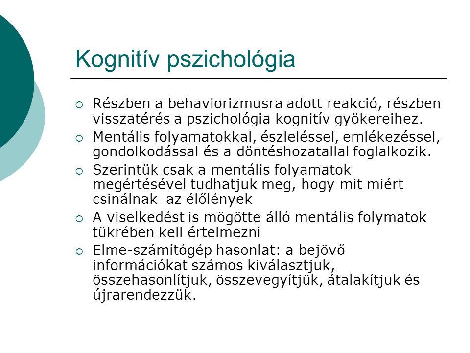 Kognitív pszichológia  Részben a behaviorizmusra adott reakció, részben visszatérés a pszichológia kognitív gyökereihez.  Mentális folyamatokkal, és