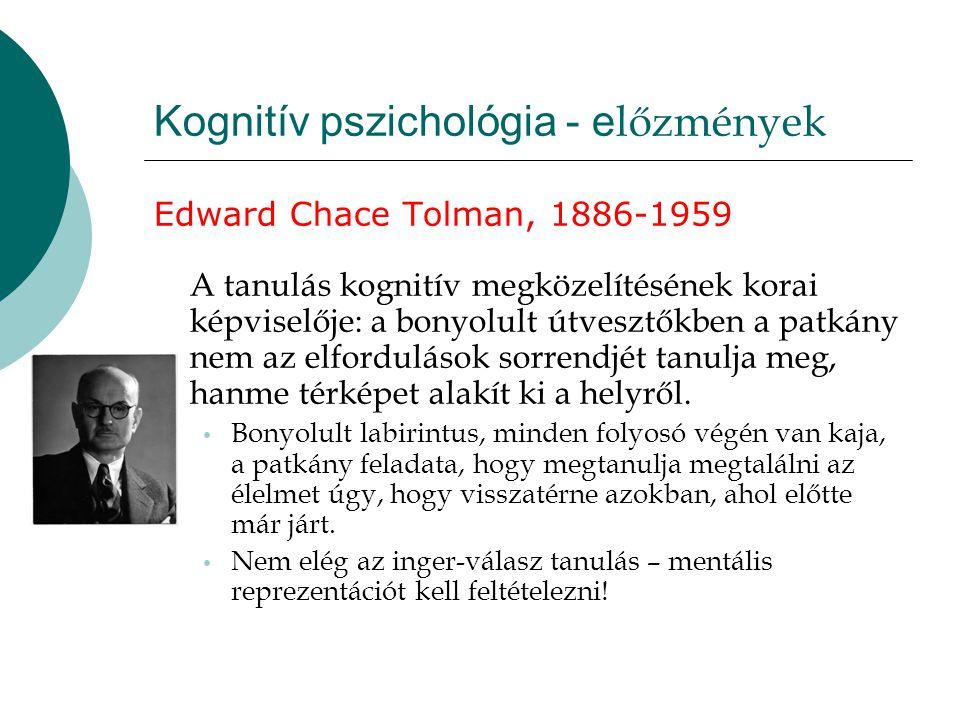 Kognitív pszichológia - e lőzmények Edward Chace Tolman, 1886-1959 A tanulás kognitív megközelítésének korai képviselője: a bonyolult útvesztőkben a p