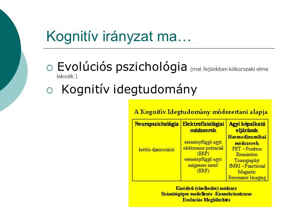 Kognitív irányzat ma…  Evolúciós pszichológia (mai fejünkben kőkorszaki elme lakozik )  Kognitív idegtudomány