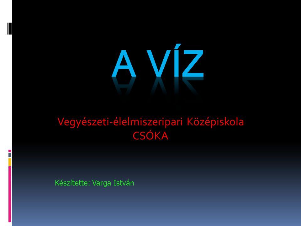 Vegyészeti-élelmiszeripari Középiskola CSÓKA Készítette: Varga István