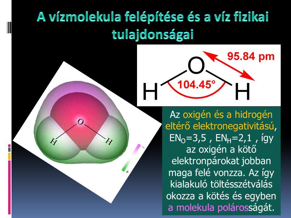 Az oxigén és a hidrogén eltérő elektronegativitású, EN O =3,5, EN H =2,1, így az oxigén a kötő elektronpárokat jobban maga felé vonzza. Az így kialaku