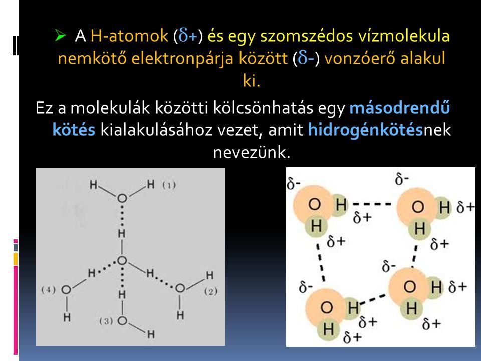  A H-atomok ( δ +) és egy szomszédos vízmolekula nemkötő elektronpárja között ( δ- ) vonzóerő alakul ki. Ez a molekulák közötti kölcsönhatás egy máso