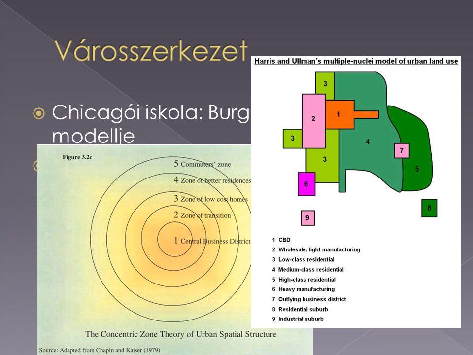  Chicagói iskola: Burgess koncentrikus modellje  Harris-Ullmann: többközpontú modell
