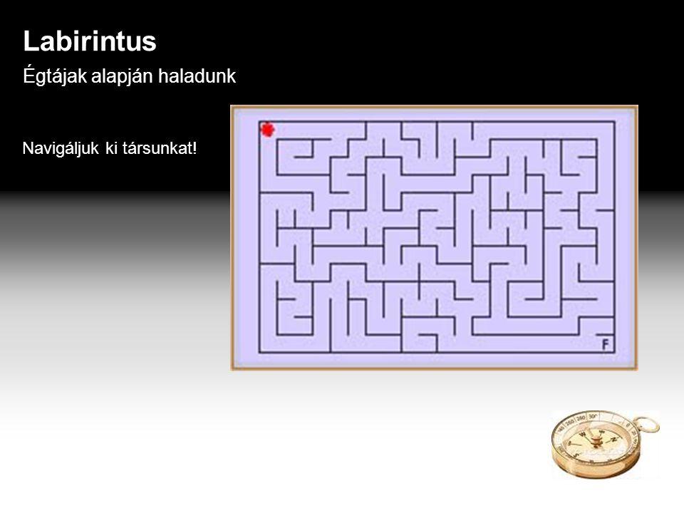 Labirintus Égtájak alapján haladunk Navigáljuk ki társunkat!