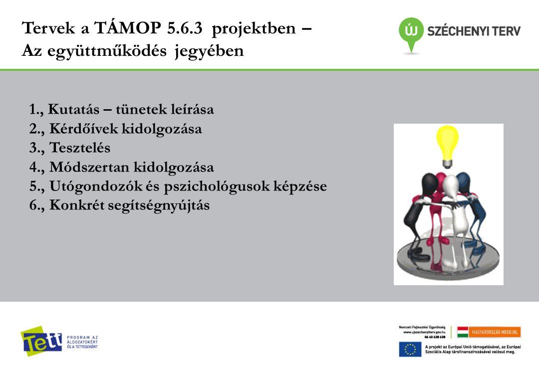 Tervek a TÁMOP 5.6.3 projektben – Az együttműködés jegyében 1., Kutatás – tünetek leírása 2., Kérdőívek kidolgozása 3., Tesztelés 4., Módszertan kidol