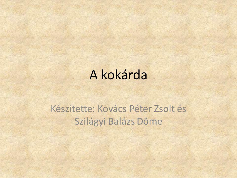 A kokárda Készítette: Kovács Péter Zsolt és Szilágyi Balázs Döme