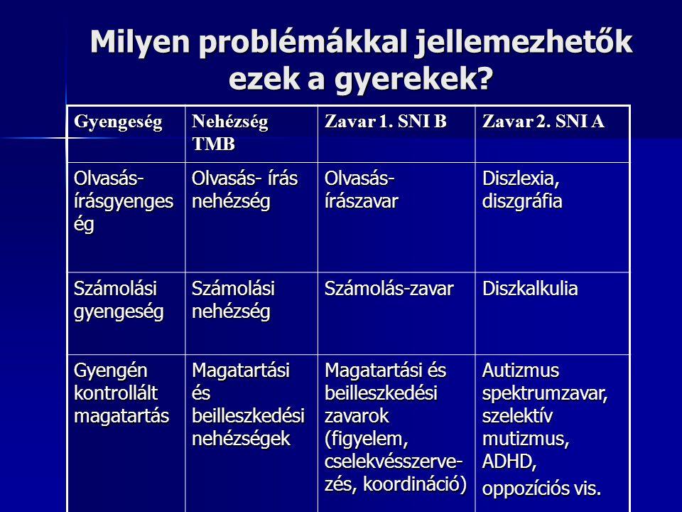 Milyen problémákkal jellemezhetők ezek a gyerekek? Gyengeség Nehézség TMB Zavar 1. SNI B Zavar 2. SNI A Olvasás- írásgyenges ég Olvasás- írás nehézség