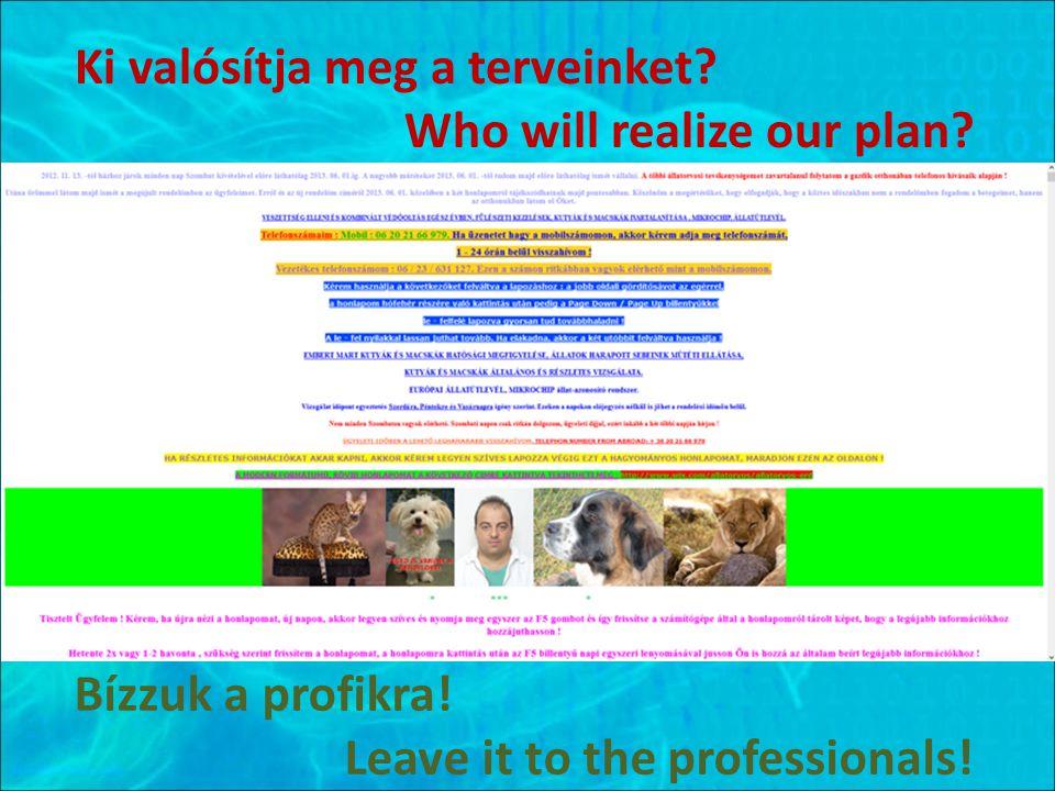 Ki valósítja meg a terveinket.Who will realize our plan.