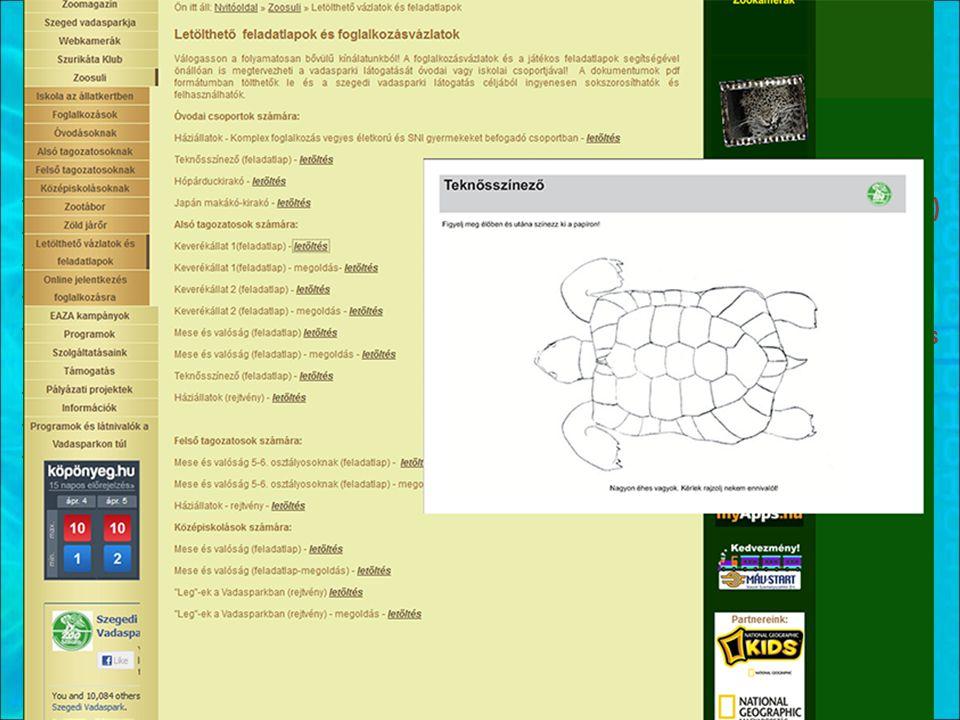 Zoopedagógia az Interneten Zoo education on the Net -Alapinformációk (árak, szolgáltatások) -Rendezvények, programok leírása -Hírek, cikkek -Foglalkozási naptár -Oktatási segédanyagok (ingyenes letöltés) -Online jelentkezés a foglalkozásokra -Kutatások megjelentetése -Reklám (1%-os kampány, szolgáltatások) -Basic information (fees and services) -Description of events and programmes -Writing news and articles -Calendar of zoo educational services -Educational materials (free download) -Online registration for programmes -Publishing researches -Advertisement of supporting campaigns and educational services