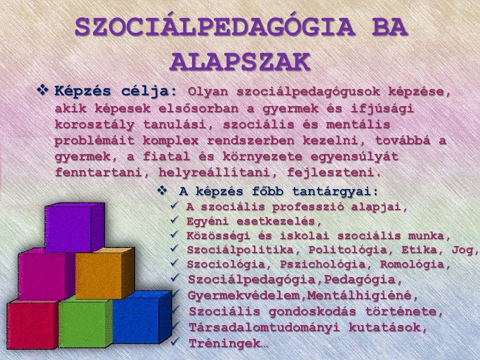 SZOCIÁLPEDAGÓGIA BA ALAPSZAK  Összefüggő szakmai gyakorlat  7.félévben, 300 óra  A tantárgy elsajátításának célja:  A terepgyakorlat a szociális munka és ezen belül a szociál- pedagógia korábban elsajátított elmélete és gyakorlati modell- jei alapján arra kívánja ösztönözni a hallgatót, hogy a meg- szerzett ismereteket képes legyen alkalmazni a gyakorlatban - egyelőre szakmai kontroll mellett.