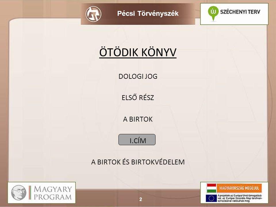 Pécsi Törvényszék I.Fejezet A birtok. A birtok megszerzése.
