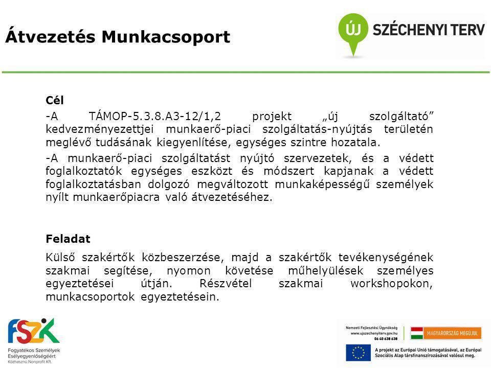 """Átvezetés Munkacsoport Cél -A TÁMOP-5.3.8.A3-12/1,2 projekt """"új szolgáltató kedvezményezettjei munkaerő-piaci szolgáltatás-nyújtás területén meglévő tudásának kiegyenlítése, egységes szintre hozatala."""