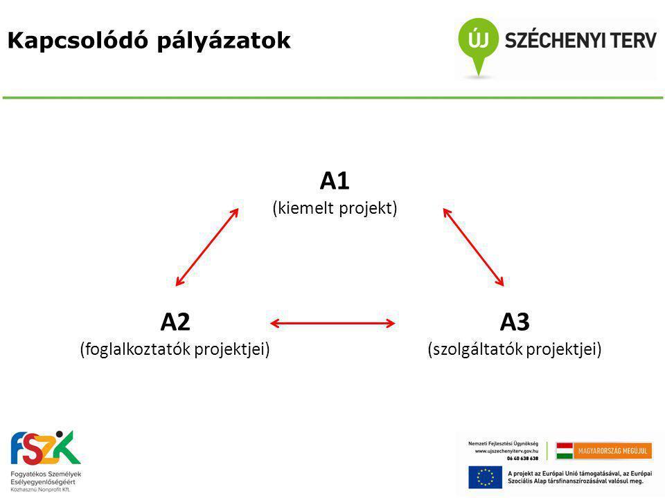 Kapcsolódó pályázatok A1 (kiemelt projekt) A2 (foglalkoztatók projektjei) A3 (szolgáltatók projektjei)