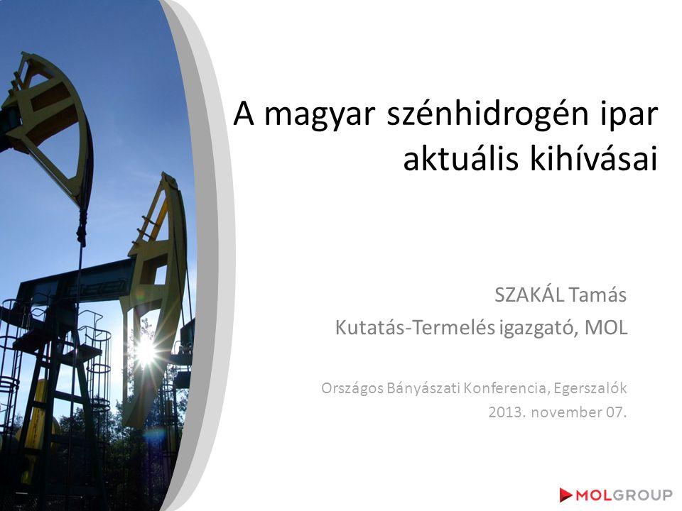 *Forrás: IEA 2012 Az észak-amerikai nem-konvencionális olaj és palagáz termelés növekedése, az ausztrál és afrikai LNG források és főként közel-keleti geopolitikai események átrajzolják a világ szénhidrogén térképét Oroszország: •Jelentős nem-konvencionális potenciál (tight oil) •Infrastruktúra-fejlesztések •A világ legnagyobb gáz exportőre Észak-Amerika: •Növekvő nem-konvencionális olaj termelés Kanadában és USA-ban •Gáz importőrből exportőr Európa: •Csökkenő olaj és gáz kereslet, a recesszió tovább mélyül •Növekvő gáz import reagálva a csökkenő termelésre Latin-Amerika: •Lassuló ütemű keresletnövekedés •Csökkenő mexikói termelés utat enged a brazíliai kőolajnak Távol-Kelet: •2000 óta globális keresletnövekedés 68%-a származik innen •Cél olajtermelés fokozása •Növekvő földgáz importéhség Afrika és Közel-Kelet: •Szaúd-Arábia a világ kőolaj termelésének 13%-át adja •Legnagyobb feles kapacitással rendelkezik •Kelet-afrikai LNG Növekvő olajkereskedelem Csökkenő olajkereskedelem Színes vonalvastagság a gáz kereskedelem volumen Ausztrália: •120 mrd m3/év LNG kapacitást terveznek 2020-ig 2