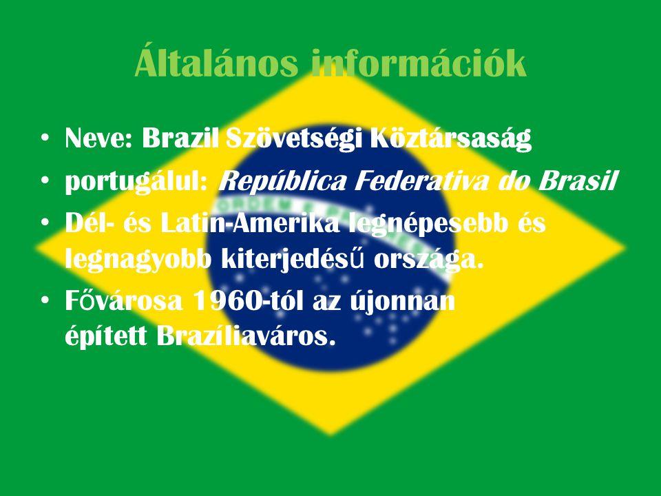 Brazília vízrajza Leghosszabb folyók: • Amazonas – 6480 km Paraná – 4700 km Purús – 3200 km • Az Amazonas folyó vízgy ű jt ő je a világon a legkiterjedtebb.