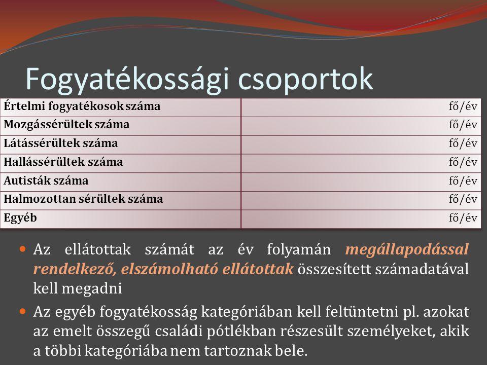 Fogyatékossági csoportok  Az ellátottak számát az év folyamán megállapodással rendelkező, elszámolható ellátottak összesített számadatával kell megadni  Az egyéb fogyatékosság kategóriában kell feltüntetni pl.