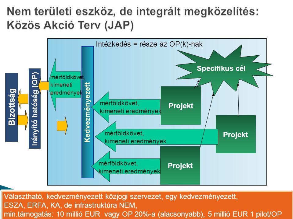 Intézkedés = része az OP(k)-nak Kedvezményezett Projekt Specifikus cél Irányító hatóság (OP) Bizottság mérföldkövet, kimeneti eredmények Választható, kedvezményezett közjogi szervezet, egy kedvezményezett, ESZA, ERFA, KA, de infrastruktúra NEM, min.támogatás: 10 millió EUR vagy OP 20%-a (alacsonyabb), 5 millió EUR 1 pilot/OP Választható, kedvezményezett közjogi szervezet, egy kedvezményezett, ESZA, ERFA, KA, de infrastruktúra NEM, min.támogatás: 10 millió EUR vagy OP 20%-a (alacsonyabb), 5 millió EUR 1 pilot/OP