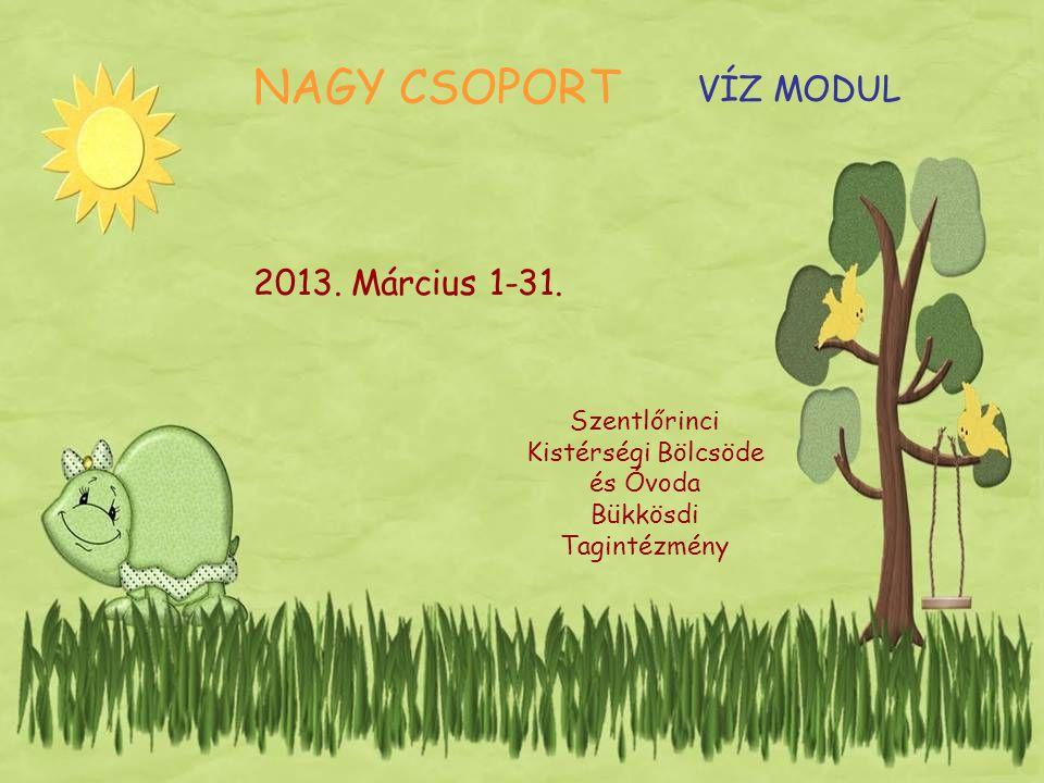 NAGY CSOPORT 2013.Március 1-31.