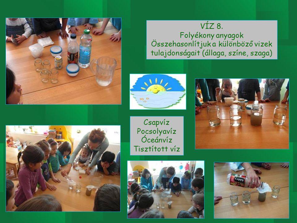 VÍZ 8. Folyékony anyagok Összehasonlítjuk a különböző vizek tulajdonságait (állaga, színe, szaga) Csapvíz Pocsolyavíz Óceánvíz Tisztított víz