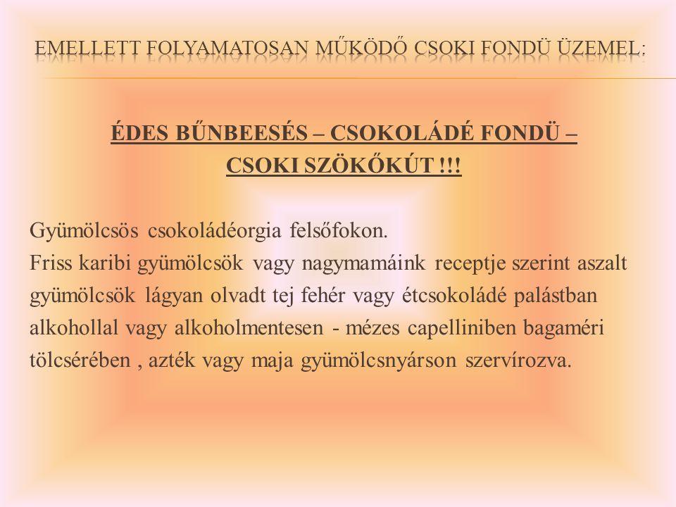 ÉDES BŰNBEESÉS – CSOKOLÁDÉ FONDÜ – CSOKI SZÖKŐKÚT !!.