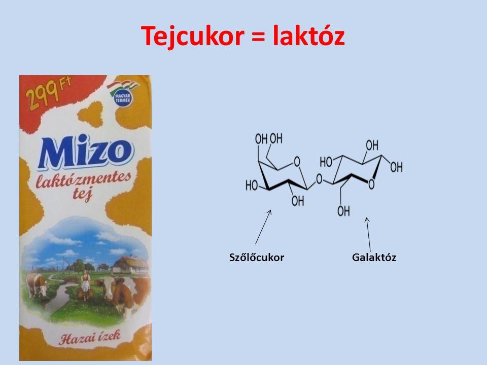 Tejcukor = laktóz SzőlőcukorGalaktóz