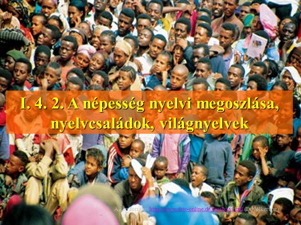 I. 4. 2. A népesség nyelvi megoszlása, nyelvcsaládok, világnyelvek A kép forrása: http://www,dsw-online.de/diashow.html (Bevölkerung)http://www,dsw-on