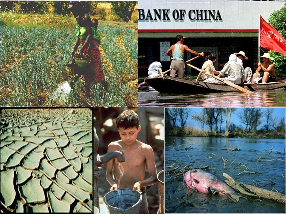 Egy vízmozgalom kialakulása 1992: Dublin/Rió elvek, Riói Föld Csúcs, riói egyezmények (UNCBD, UNFCCC, UNCCD) 1997: I.