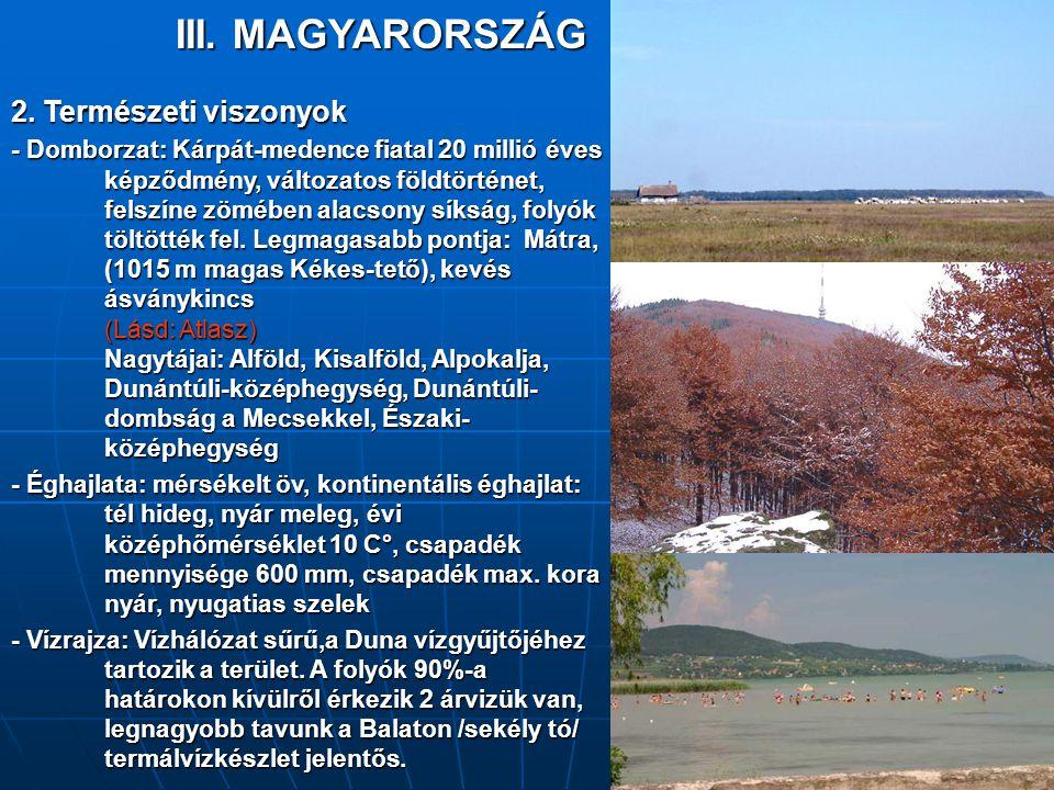 2. Természeti viszonyok - Domborzat: Kárpát-medence fiatal 20 millió éves képződmény, változatos földtörténet, felszíne zömében alacsony síkság, folyó