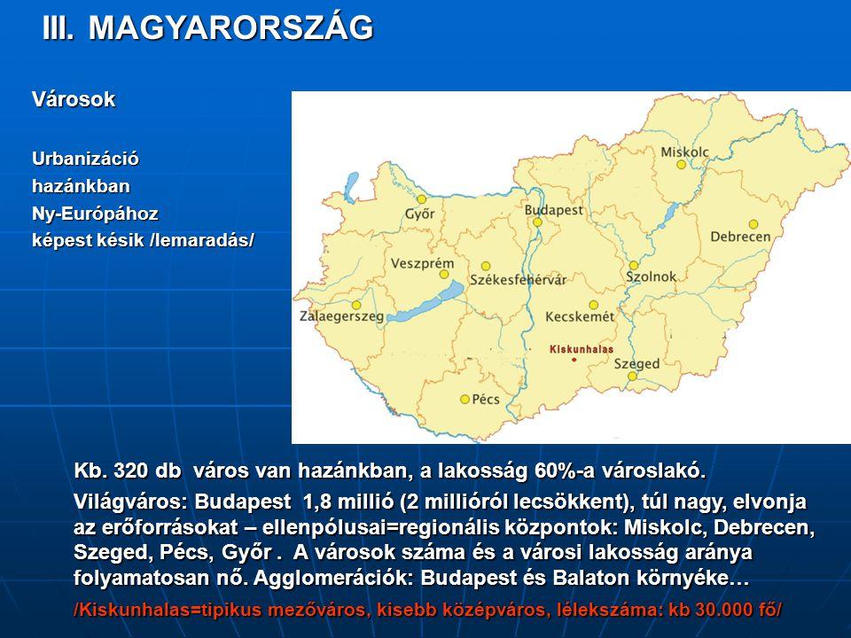 III. MAGYARORSZÁG VárosokUrbanizációhazánkbanNy-Európához képest késik /lemaradás/ Kb. 320 db város van hazánkban, a lakosság 60%-a városlakó. Világvá